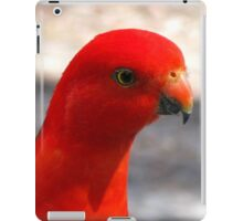 Australian King Parrot iPad Case/Skin
