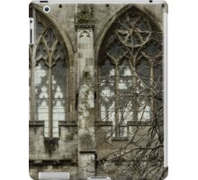 Gothic Cathedral iPad Case/Skin