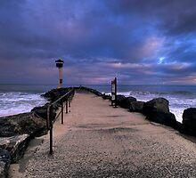 The Lookout by John Pitman