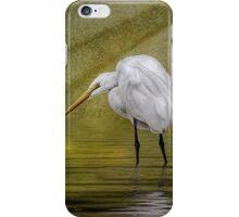 Everglades Evening iPhone Case/Skin