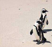 Jackass Penguine's by Jennabenna11