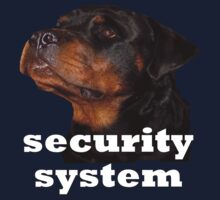 security system by ryan  munson