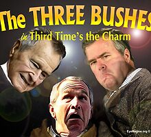 "The Three Bushes in ""Third Time's the Charm"" by EyeMagined"