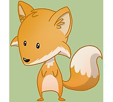 Widdle Fox Photographic Print