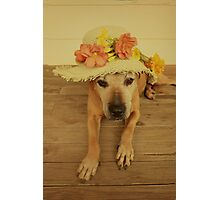 In my Easter Bonnet Photographic Print