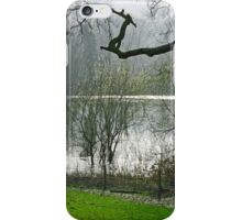 Pond near Home Farm, Ilam iPhone Case/Skin