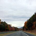 On the Road In North Carolina by WeeZie
