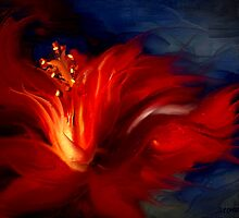 In Red by Shanina Conway