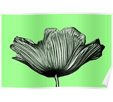 Lime Green Tulip Flower Abstract Poster