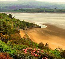 The Beauty of Wales by karenlynda