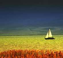 Sailboat on Utah Lake by Ryan Houston