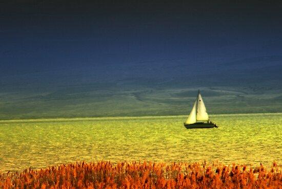 Sailboat on Utah Lake by Ryan Houston