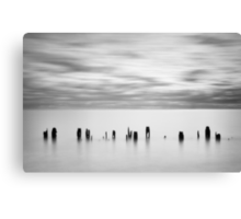 Lined Up Canvas Print