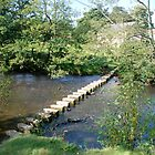 Stepping Stones at Lealholme by dougie1