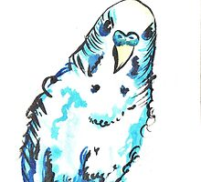 Blue watercolour budgie by drknice