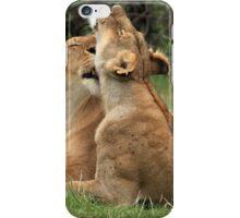 Lions On The Masai Mara iPhone Case/Skin