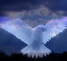 HEAVENLY SPIRIT  by Madeline M  Allen