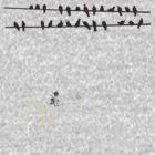 Bombs Away 2  by Carrie Glenn