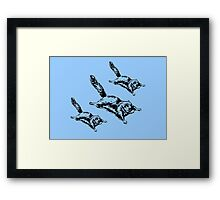 Sugar Glider Attack Framed Print