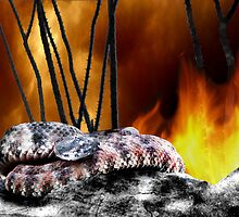 CG&H 2: The Snake, The Ocotillo, The Fire by Myke Clarkson