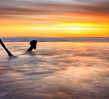 Anchoring Light by Alan  Wright