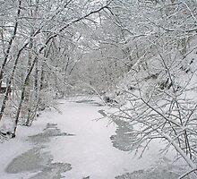 Beautiful Winter by kkphoto1