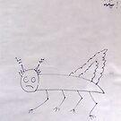 bug by Collyn Barr