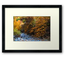 Blue Stones, Yellow Leaves - a Dry River Impressions Framed Print