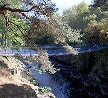 Suspension Bridge by dougie1