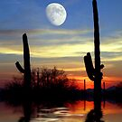 Saguaro Summer by digitalmidge