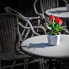 Table with tulips by Kurt  Tutschek