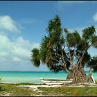Fanning Island, Republic of Kiribati by Koala