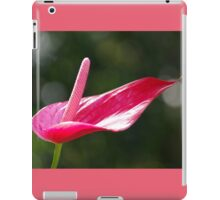 Pristine - Rose Red Anthurium Lily iPad Case/Skin