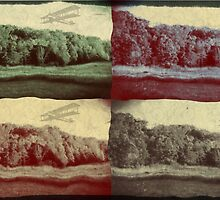 Vintage Planes Over the Trees by blackmoonrose