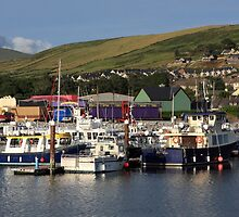 Dingle Harbour County Kerry Ireland by aidan  moran