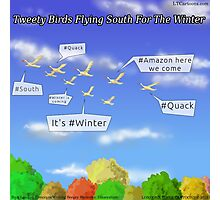 Tweety Birds Flying South For The Winter  Photographic Print