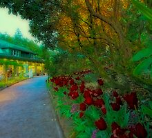 Butchart Gardens at Night 3 by Deri Dority