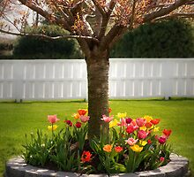 Spring as Sprung  by Mike  Savad