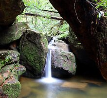 Terrace Falls by Andrew McNeil