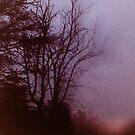 """""""Before Dawn"""" frame 01 by kitza"""