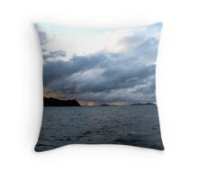 Running Before The Storm Throw Pillow