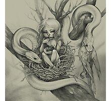 Snake Child (alternate colour) Photographic Print