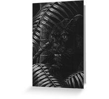 Nightstalker - Black Leopard Greeting Card