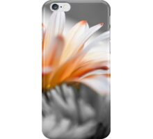 The Beauty Before Us iPhone Case/Skin