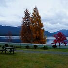 Beautiful Lake Manapouri...at dawn by Magee