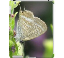 Long-tailed Pea Blue Butterfly iPad Case/Skin