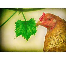 Orange Chook - Green Leaf Photographic Print