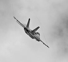 US Navy Super Hornet by Nathan T