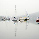 The Fog by Anthony Davey