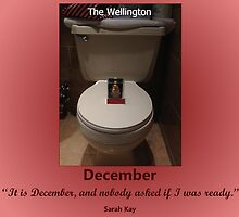 Toilets of New York 2015 December - The Wellington by newbs